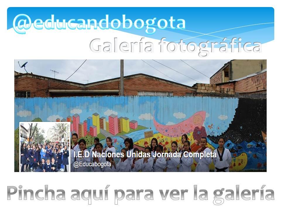 @educabogota